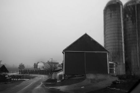 Amish Farm #40