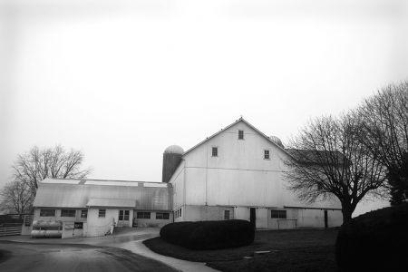 Amish Farm #42