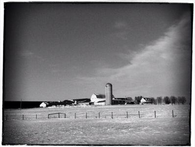 Amish Farm #88
