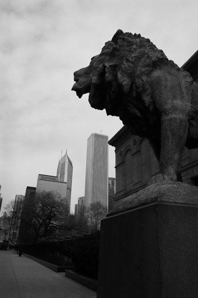 city-scape-Protector