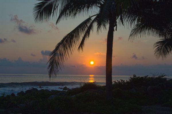 ocean-Tranquillo