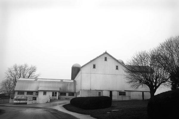 rural-scape-Amish-Farm-42