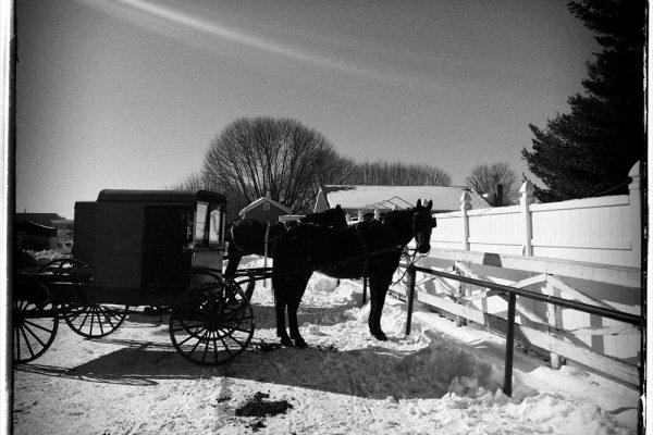 rural-scape-Amish-Ride-82