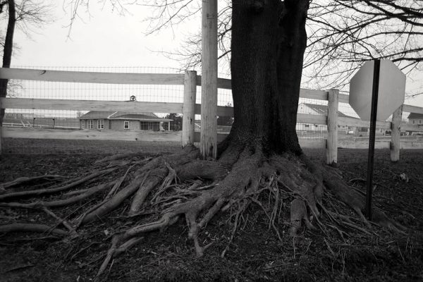 rural-scape-Roots-of-Education